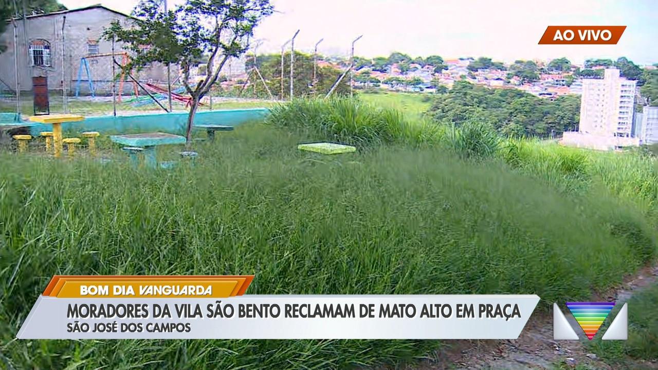 Moradores da Vila São Bento reclamam de mato alto em praça de São José