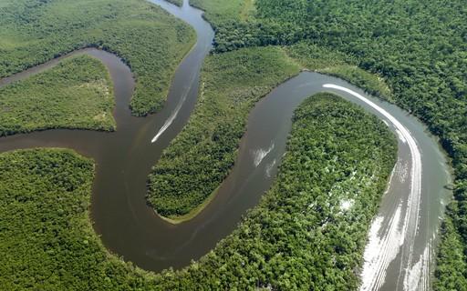 Rede une mais de 80 instituições para incentivar produção sustentável na Amazônia