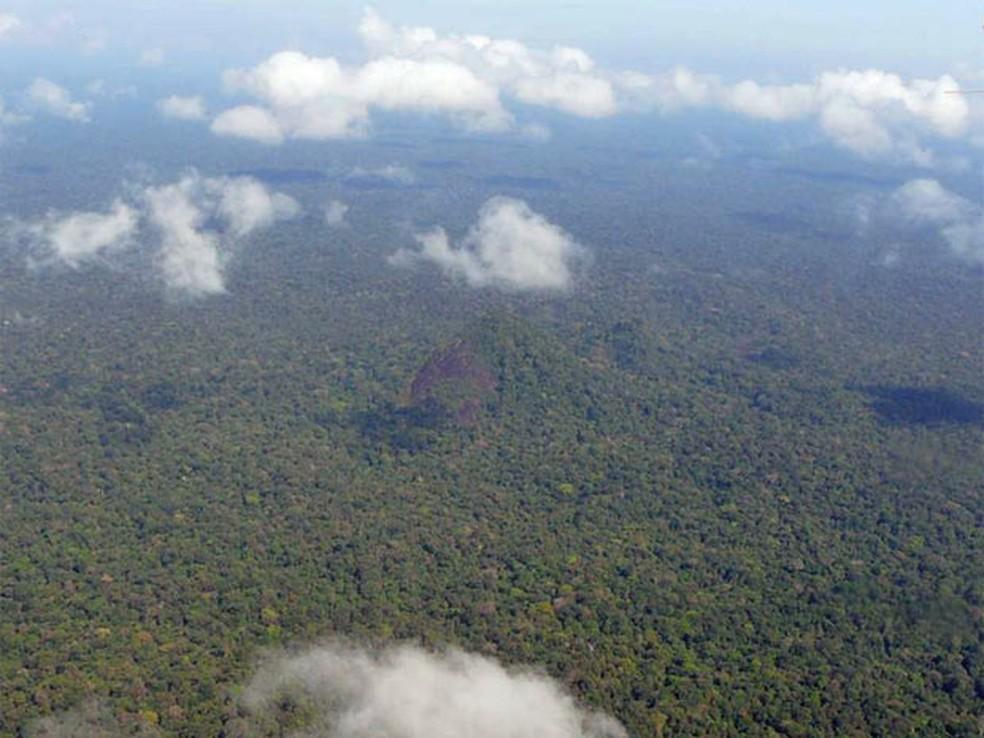 Buscas por aeronave na Floresta Amazônica completa uma semana; área onde vivem os índios é de difícil acesso — Foto: Divulgação/Grayton Toledo/Governo do Amapá