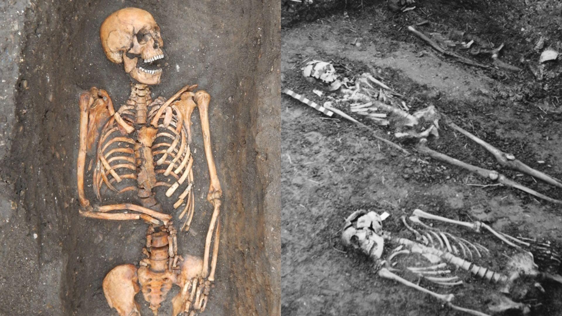 Esqueletos de pessoas que morreram de peste bubônica provenientes de sepultamentos em Cambridge, na Inglaterra (Foto: Cessford et.al /Cambridge Core )