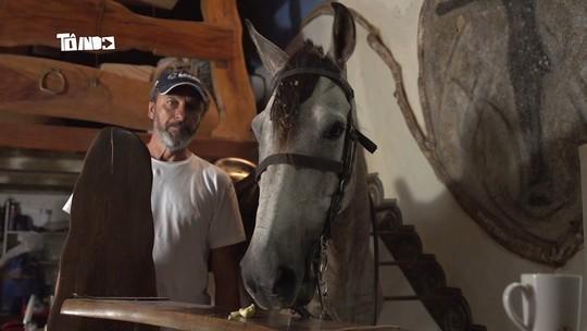 Mário conhece mineiro que cria cavalo dentro de casa