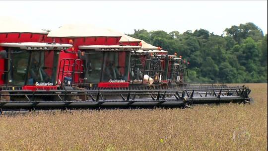 Justiça ameaça tirar do mercado principal herbicida usado nas lavouras de soja