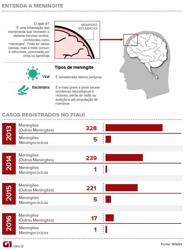 Gráfico, Piauí,meningite   (Foto: Adelmo Paixão)