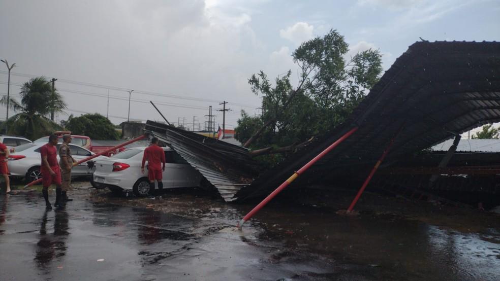 Árvore derrubou muro e atingiu carros na sede do Corpo de Bombeiros, em Manaus. — Foto: Divulgação/Corpo de Bombeiros