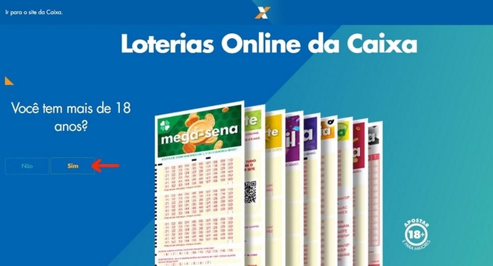 Confirmação de idade mínima na tela inicial da Loterias online Caixa  — Foto: Reprodução/Raquel Freire