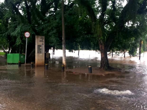 Nível do Rio Piracicaba chega a 5 metros e transborda  (Foto: Caroline Giantomaso/G1)
