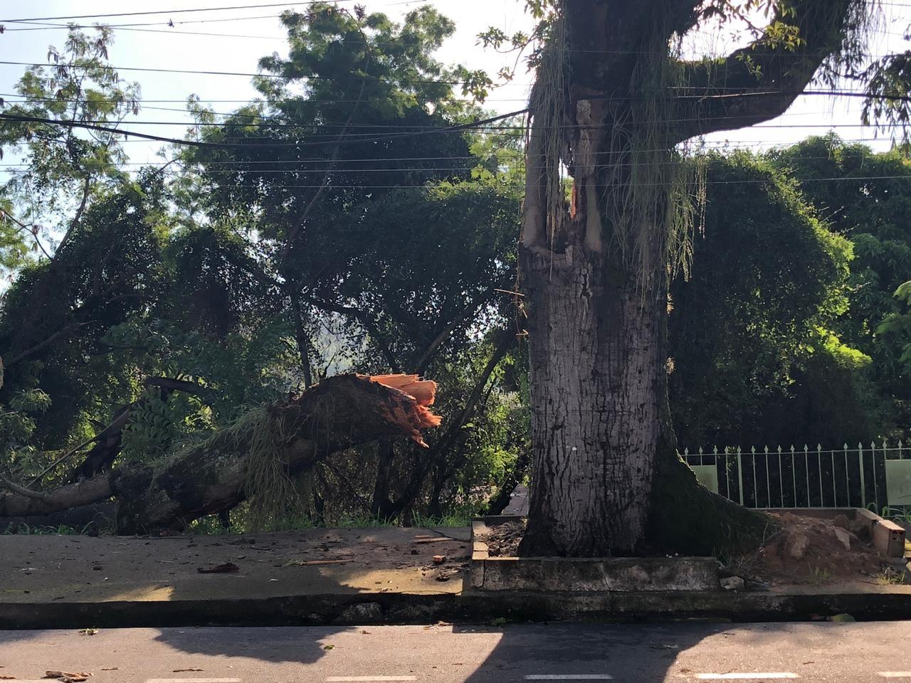 Limpeza é realizada em Volta Redonda, após estragos causados pela chuva - Noticias