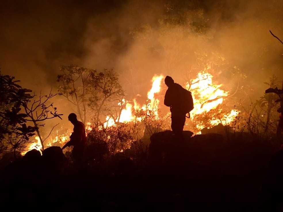 Incêndio no Parque Estadual de Monte Alegre em outubro de 2017 — Foto: Ideflor-Bio/Divulgação