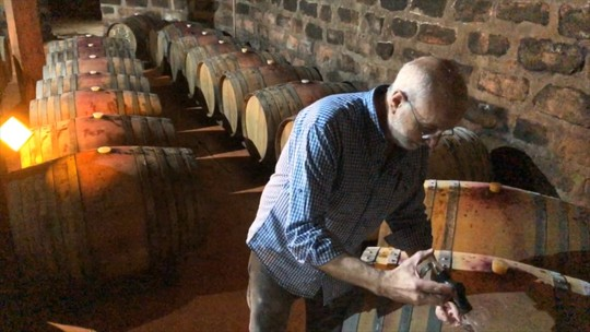 Setor da vitivinicultura está em crescimento na região de Santana do Livramento