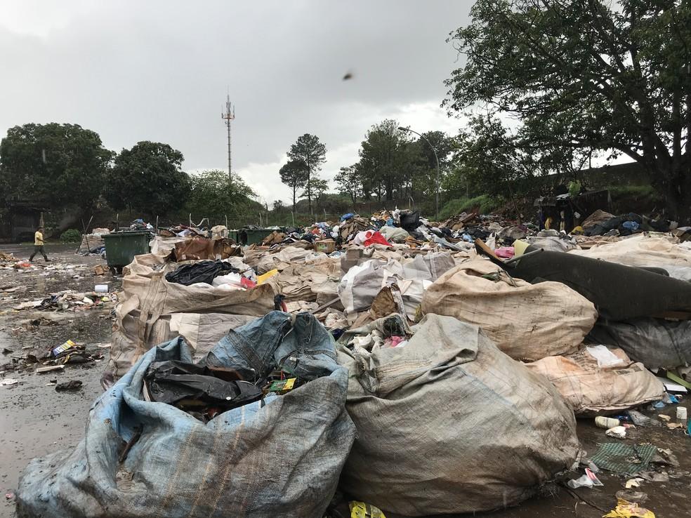 Sacos de lixo onde 3 mil bolívares venezuelanos foram encontrados (Foto: Marília Marques/G1)