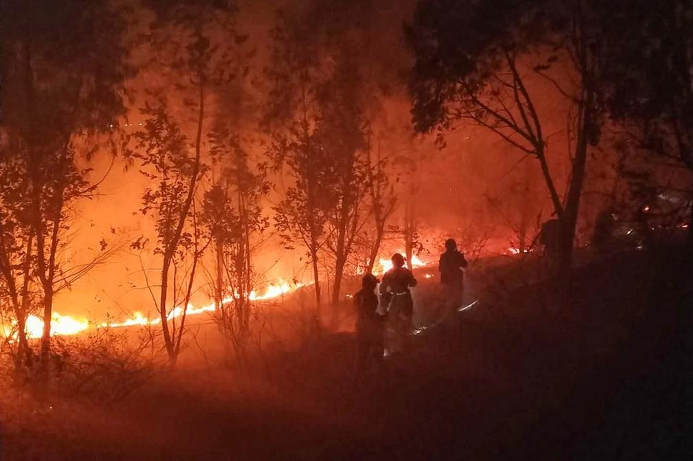 Bombeiros enfrentam incêndio florestal na província de Sichuan, no sudoeste da China nesta terça (31) — Foto: STR/AFP