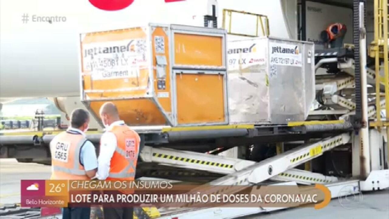 Lote com insumos para a produção da CoronaVac chega em SP