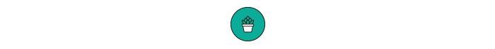 Ilustração planta no vaso (Foto: Ilustração planta no vaso)