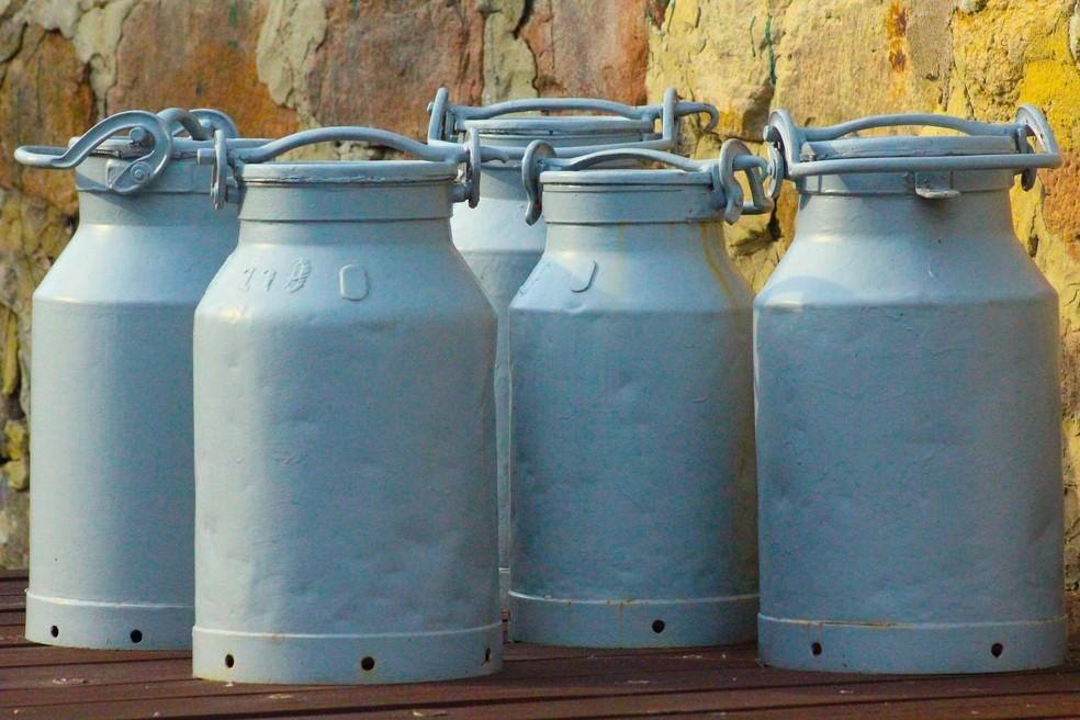 barril de leite; produção de leite; leite de vaca; leite in natura — Foto: Vanessa Schulze