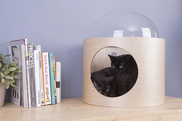 Casinha para gatos tem design inspirado em nave espacial (Foto: Divulgação)