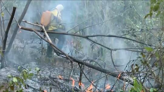 Com 5,5 mil focos, Maranhão é 1º em nº de queimadas no mês de outubro