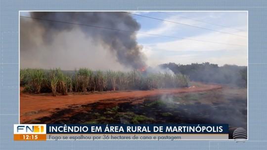 Pastagem e plantação de cana-de-açúcar são atingidas por incêndio