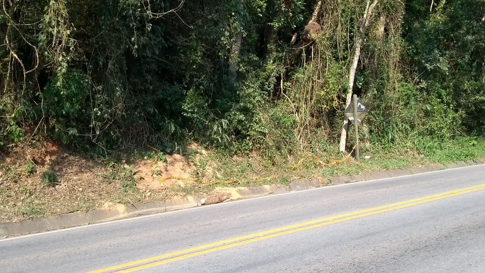 Acidente foi na rodovia Nilo Máximo — Foto: Tiago Bezerra / TV Vanguarda