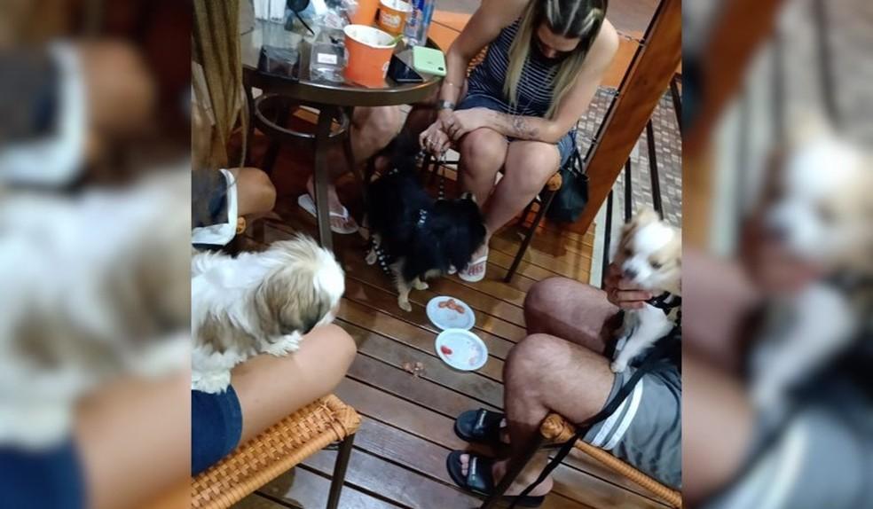 Espaço compartilhado entre tutores e seus pets permite o consumo de sorvetes específicos. — Foto: Arquivo Pessoal