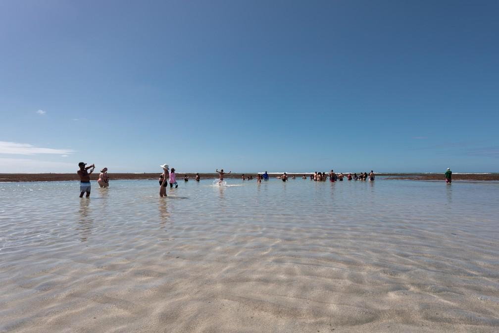 Passeio de jangada nas piscinas naturais da Praia do Toque, em São Miguel dos Milagres, atrai turistas — Foto: Marcelo Brandt/G1