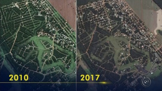 Após denúncia de desmatamento ilegal, imobiliária de Bauru é fiscalizada
