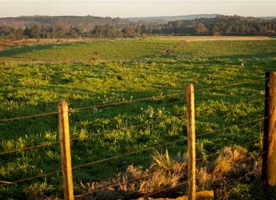 agricultura_terra (Foto: Marcelo Curia/Ed. Globo)