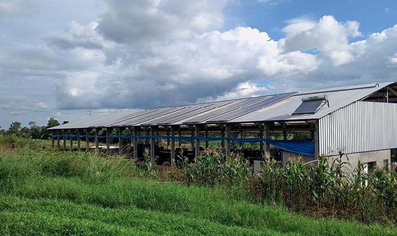 Energia solar no campo - Placas instaladas em fazenda da família Muraro, em Chapecó (SC) (Foto:  )