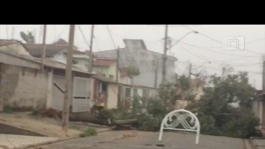 Forte chuva destelha casas, derruba árvores e causa transtornos em Jacareí