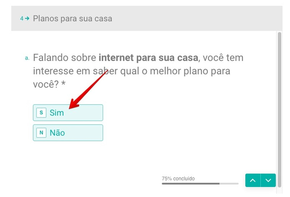 Questionário online revela o plano de Internet ideal — Foto: Reprodução/Helito Beggiora