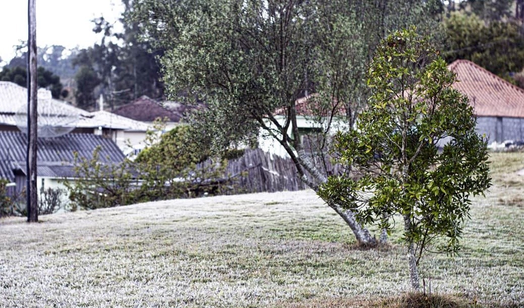 Monte Verde e Maria da Fé registram geada e baixas temperaturas durante a madrugada