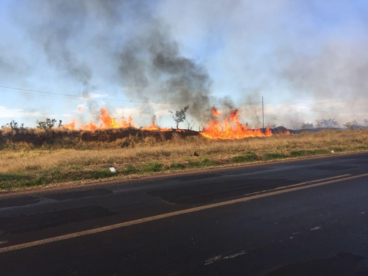 Bombeiros combatem vários focos de incêndio no Distrito Industrial em Uberlândia; veja vídeo