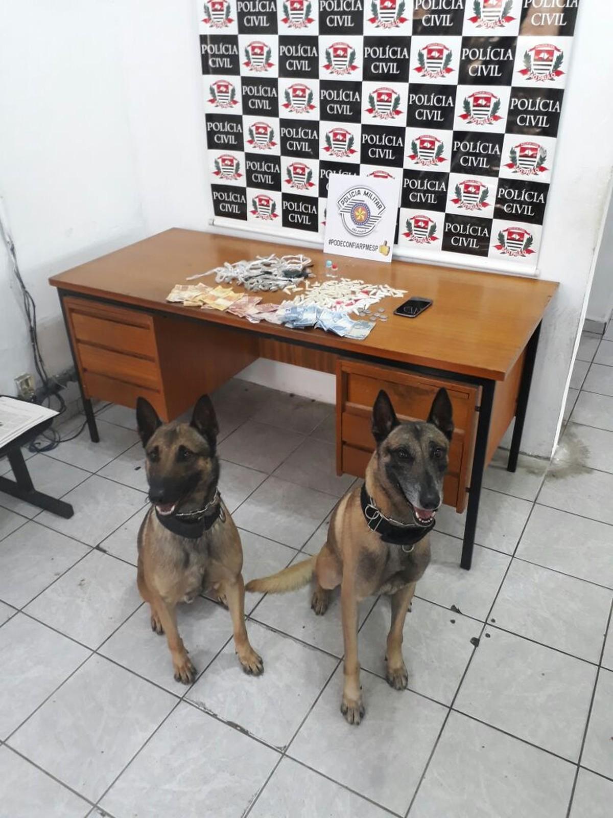 Cães da Polícia Militar encontram maconha, cocaína e dinheiro em Suzano