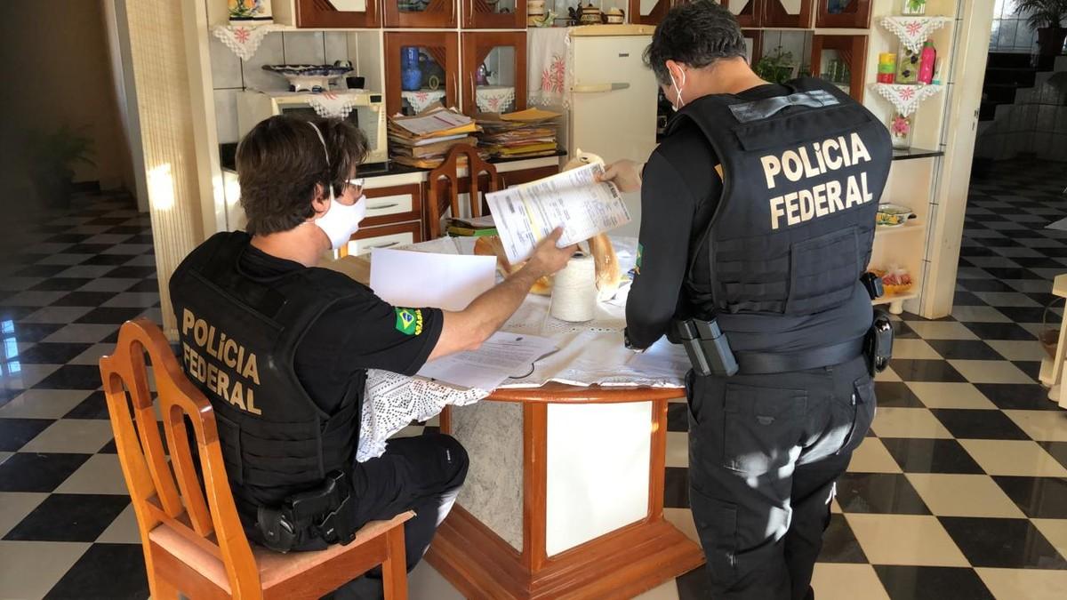 Polícia Federal deflagra operação contra desmatamento ilegal em municípios do interior do Pará – G1