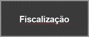 fiscalizacao (Foto: Arte g1)