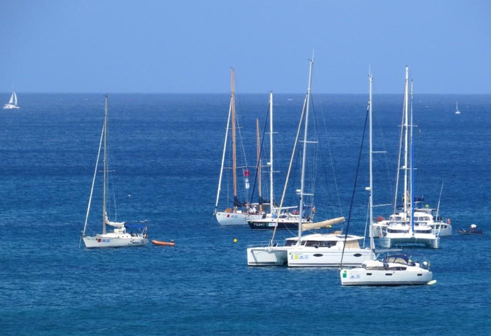 Os veleiros devem seguir da ilha para Cabedelo, na Praíba  — Foto: Ana Clara Marinho/TV Globo