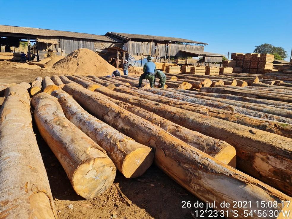 Fiscalização apreende madeira ilegal e aplica multa de meio milhão em Feliz Natal (MT) — Foto: PMMT