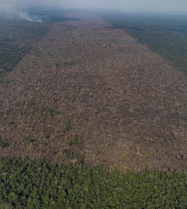 Brasil precisaria investir mais de R$ 90 bilhões até 2030 para cumprir metas do clima, aponta estudo