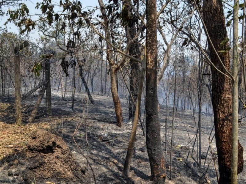 Incêndios destruíram área equivalente a 79 mil campos de futebol na Fazenda Tatu, Reserva do Panga e arredores em Uberlândia, segundo bombeiros