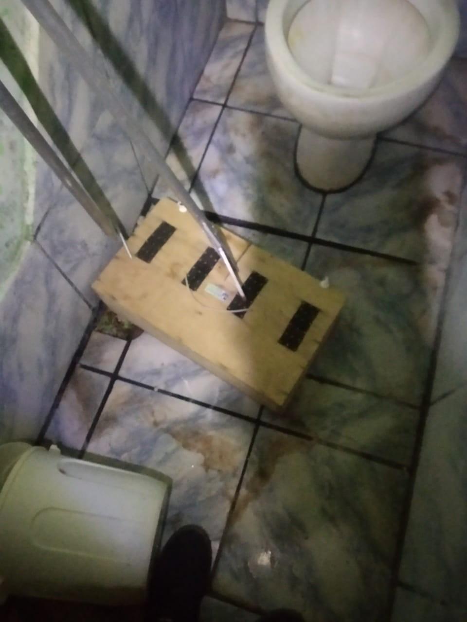 Morador encontra cobra cascavel no banheiro de casa em Castilho; vídeo