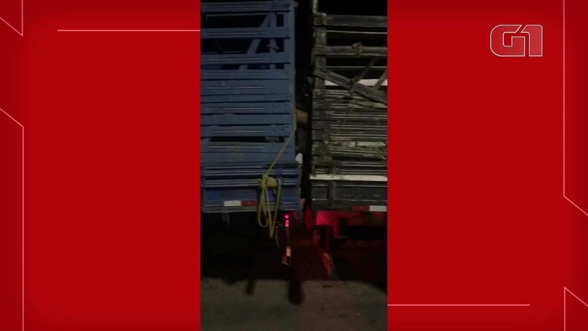 Homem é preso suspeito de invadir propriedade, render moradores e roubar cinco vacas no interior do Ceará