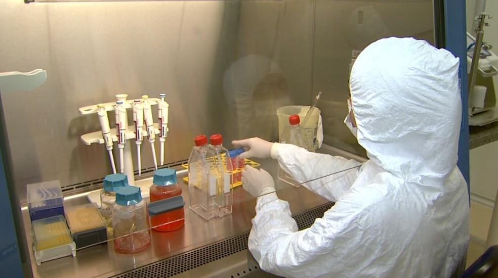 Pesquisadora do Centro de Terapia Celular do Hemocentro, em Ribeirão Preto (SP) — Foto: Reprodução/EPTV