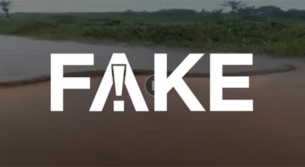 É #FAKE que sucuri de 15 metros tenha sido encontrada no rio Xingu — Foto:  Reprodução