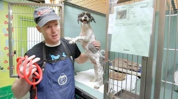 Mark cuida de cachorrinho em abrigo (Foto: Divulgação)