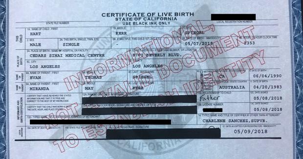Registro de nascimento do filho de Miranda Kerr (Foto: Reprodução/TMZ)