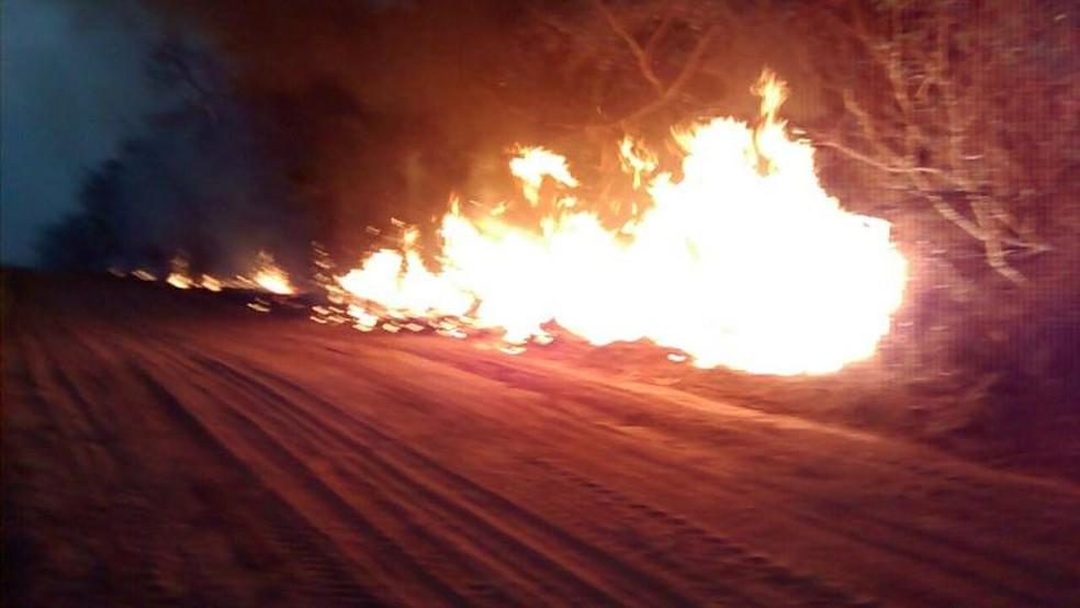 Incêndio em Floreal demorou mais de 13 horas para ser controlado (Foto: Divulgação/Corpo de Bombeiros)