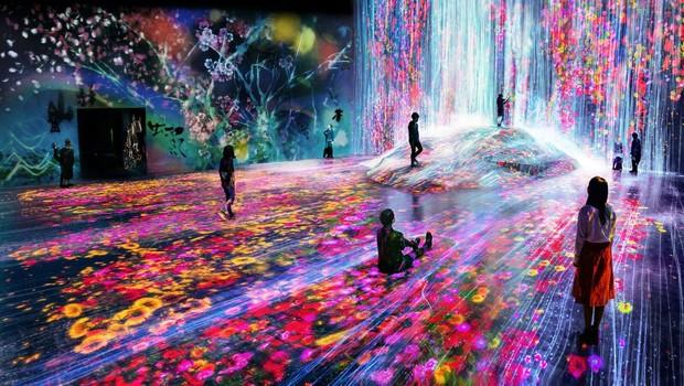 Digital Art Museum (Foto: Divulgação )