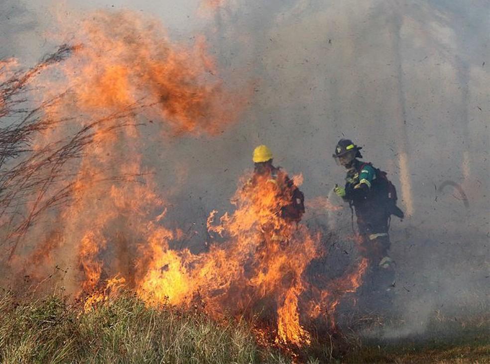 Bombeiros combatem o fogo em Robore, na província de Santa Cruz, na Bolívia — Foto: Divulgação/Ministério Defesa Bolívia