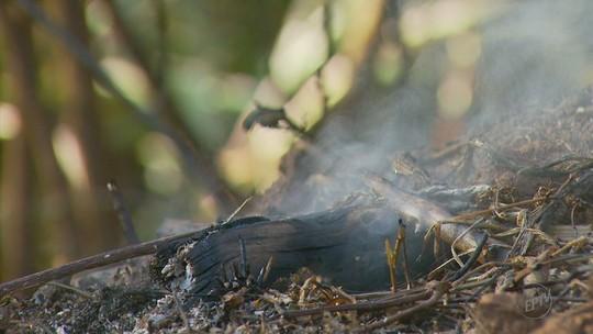 Morte de idoso em incêndio alerta para riscos de atear fogo em áreas sem autorização
