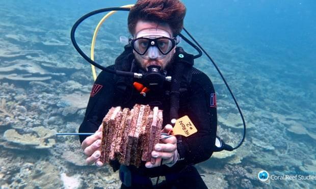 Pesquisador coleta tijolos com estimulantes para proliferar corais na Grande Barreira de Coral australiana (Foto: Margaux Hein/ARC CoE for Coral Reef Studies)