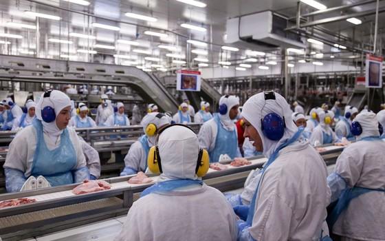 Linha de produção da fábrica da processamento de aves  (frangos e derivados) da JBS em Lapa, no Paraná, onde há a suspeita de irregularidades na certificação sanitária internacional por parte de auditores fiscais do ministério (Foto:  ANDRE COELHO / Agência O Globo)